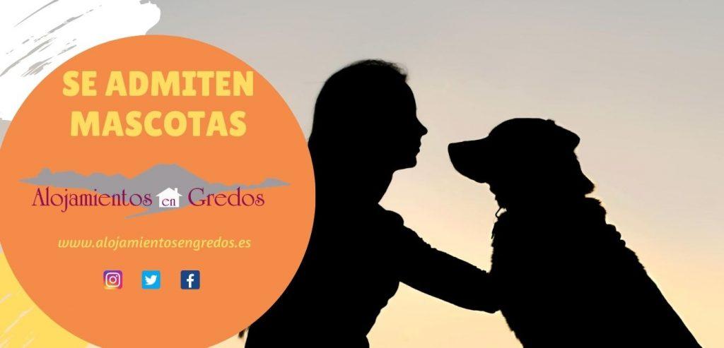 Mascotas en alojamientos en la Sierra de Gredos